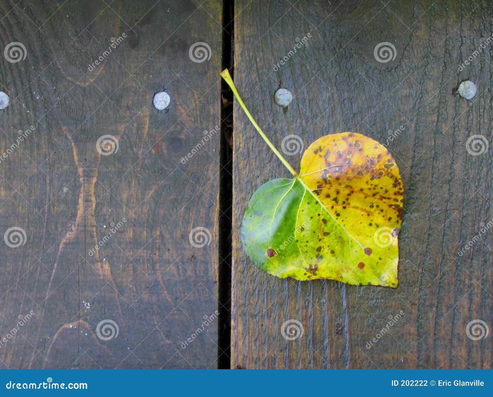 Jesienią serce