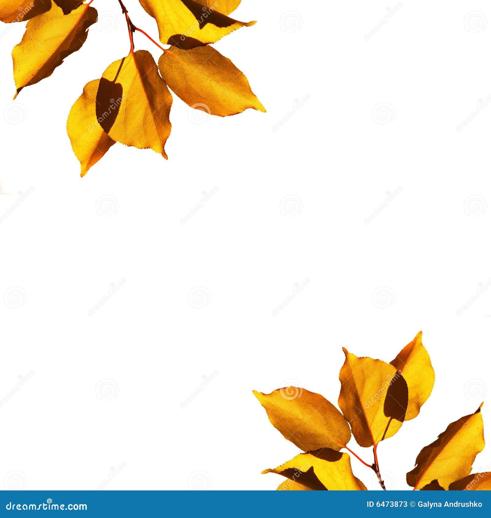Jesienią tło