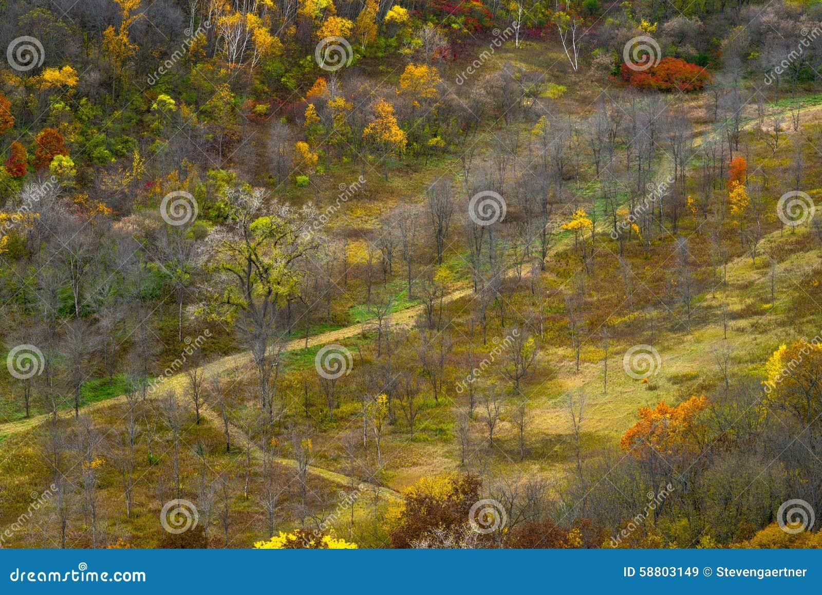 Jesieni dolina, rzeka bluffuje stanu parka