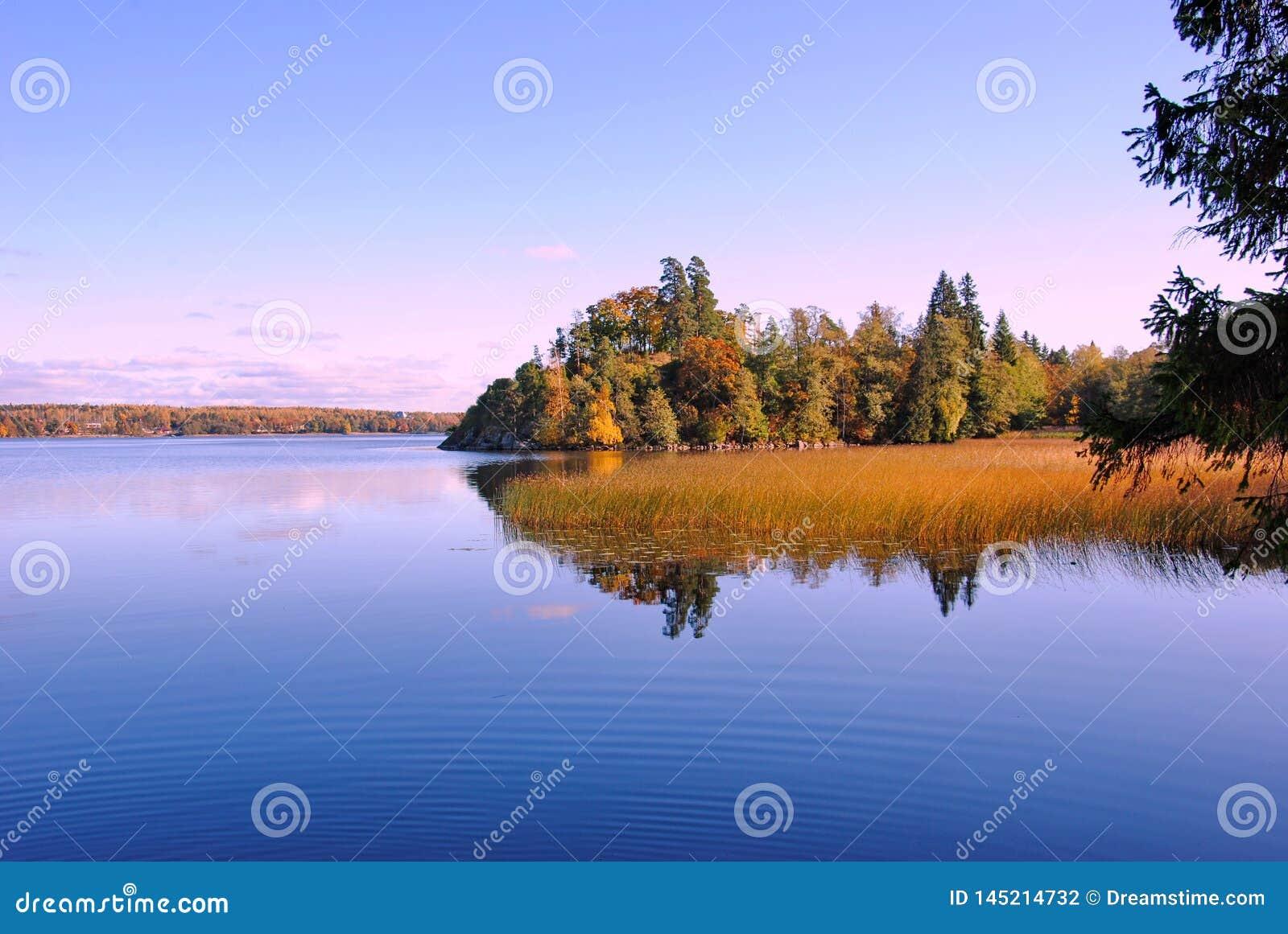 Jesieni piękno Leningrad region