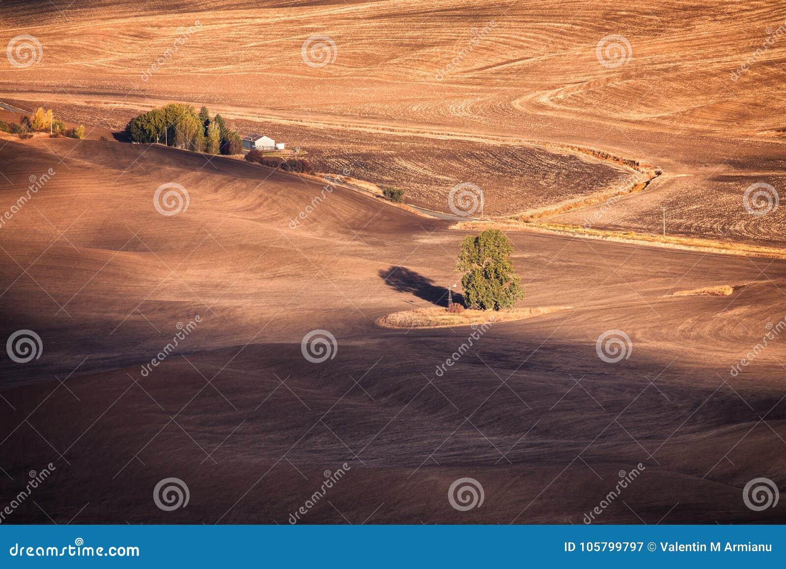 Jesieni pola