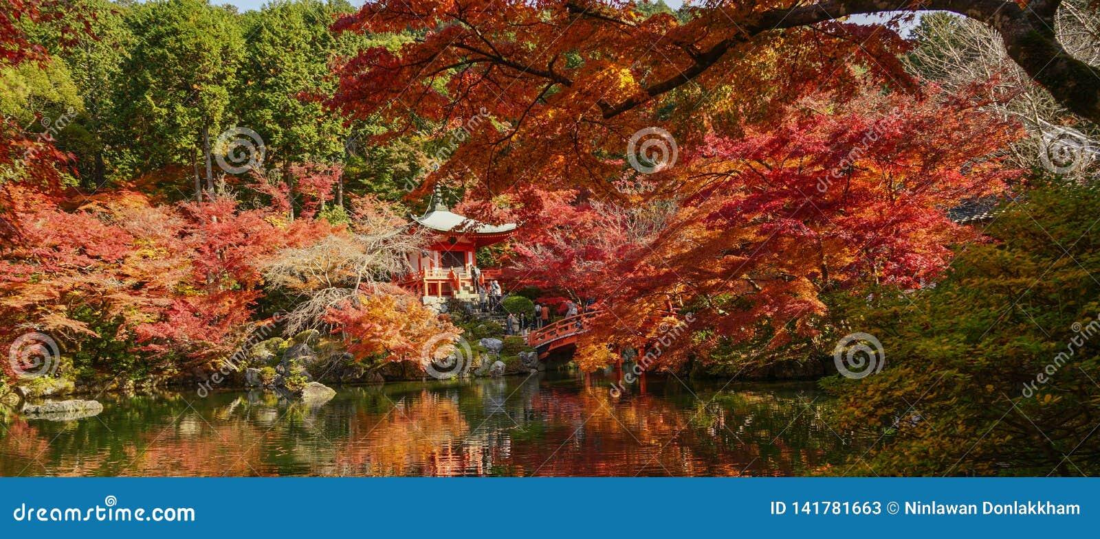Jesieni sceneria Kyoto, Japonia