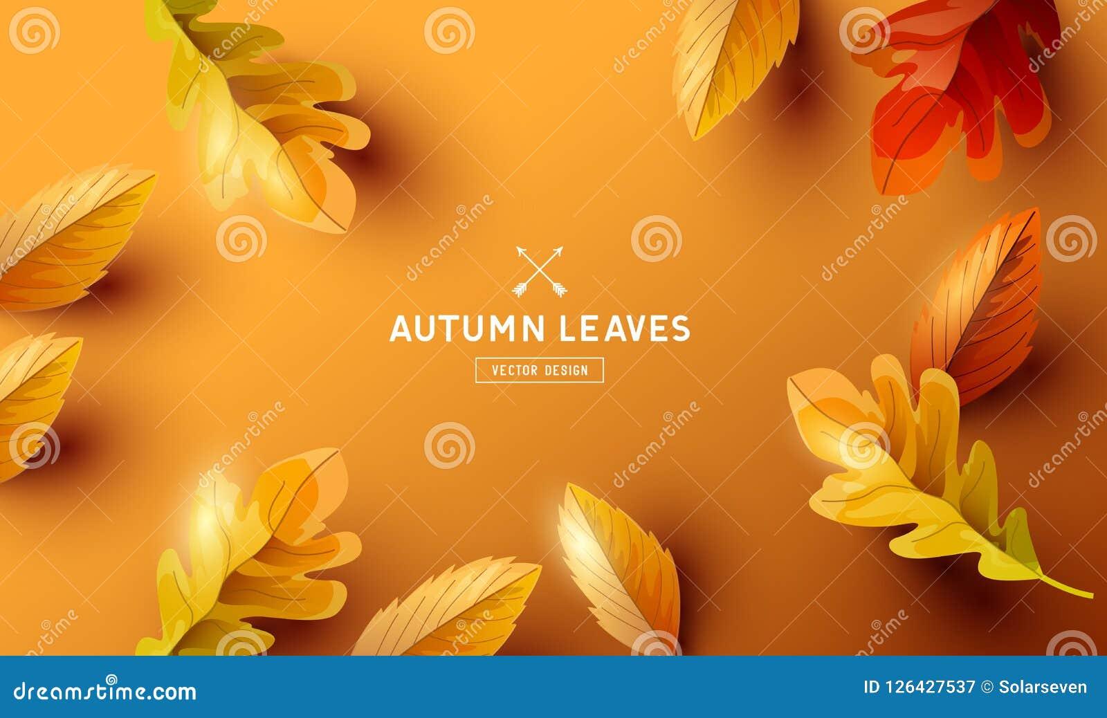Jesieni tło z Spada liścia projektem