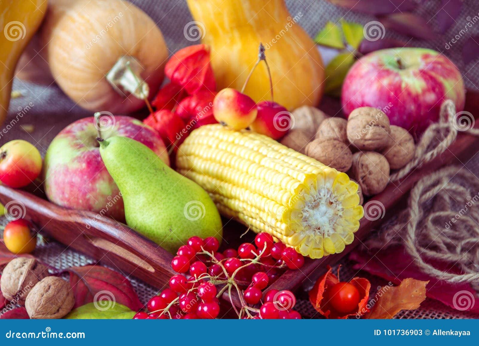 Jesieni warzywa, jagody i owoc, Sezonowy jesieni jedzenie - pu