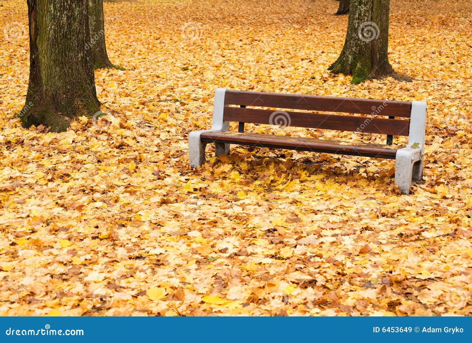 Jesienna stanowiska badawczego