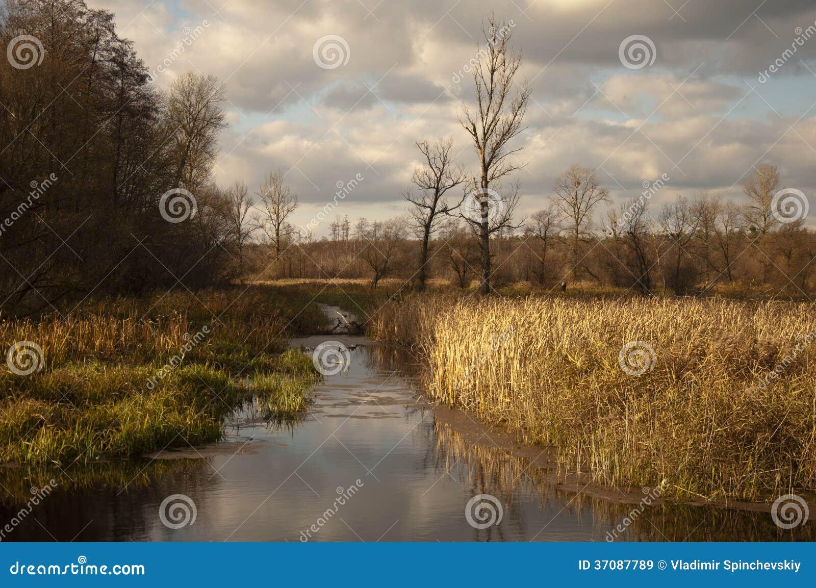 Download Jesienny dzień obraz stock. Obraz złożonej z woda, nowenna - 37087789