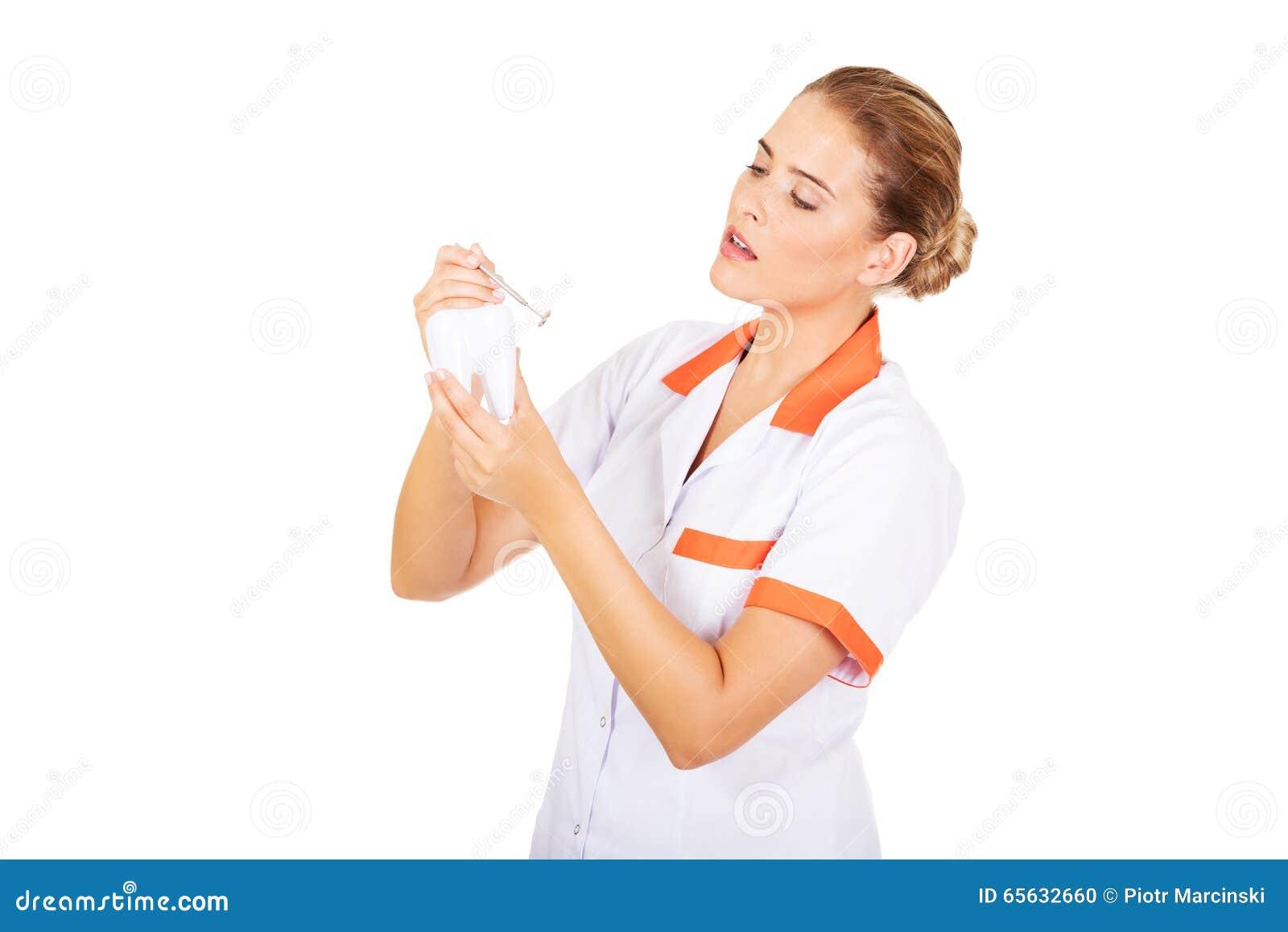Jeune dentiste féminin tenant un modèle de dent et un miroir dentaire