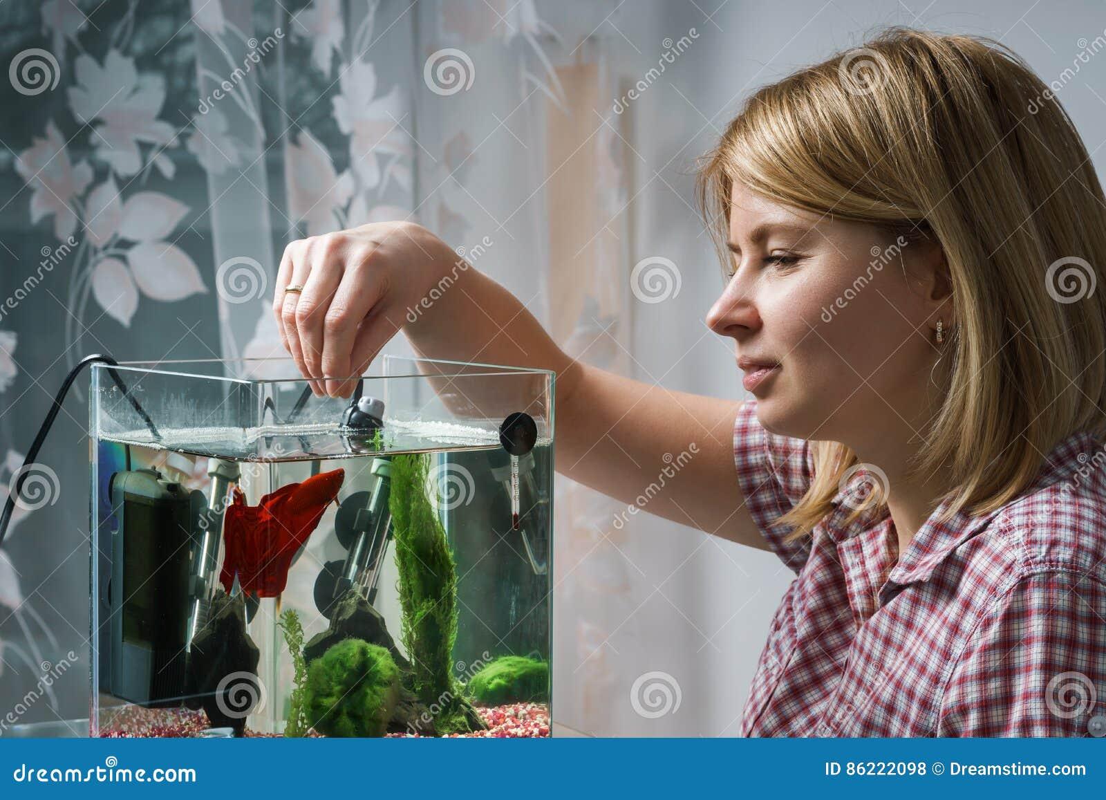 Jeune femme alimentant de bêtas poissons dans l aquarium à la maison