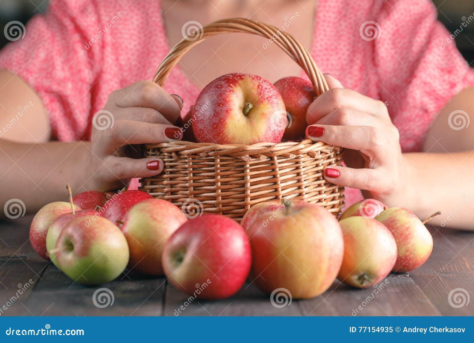 Jeune femme méconnaissable dans la chemise rouge moissonnant des pommes