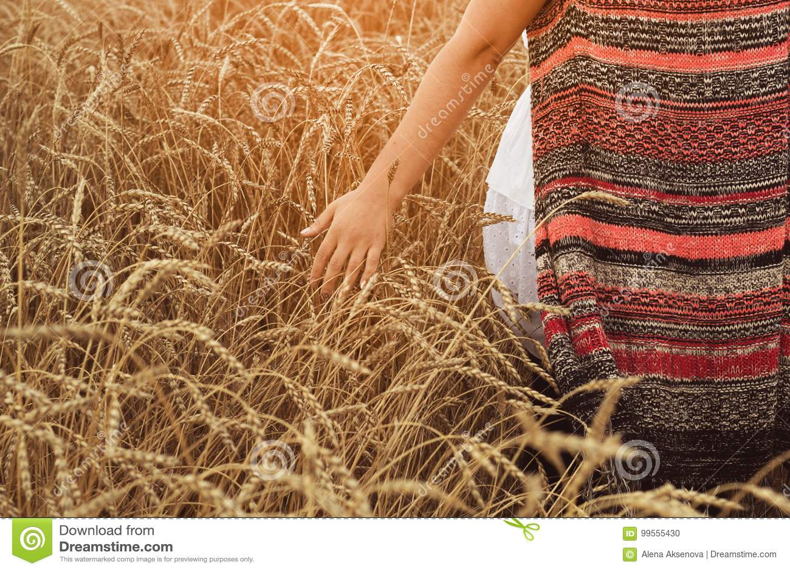 Jeune femme marchant par le champ et le blé de contacts