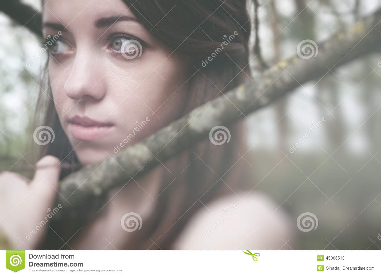 Jeune femme sensuelle en harmonie en bois avec la nature