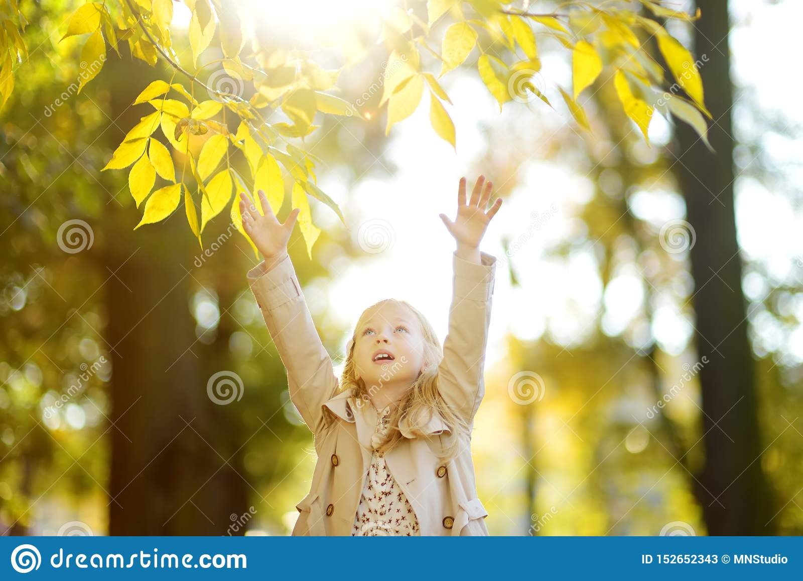 Jeune fille adorable ayant l amusement le beau jour d automne Enfant heureux jouant en parc d automne Enfant recueillant le feuil