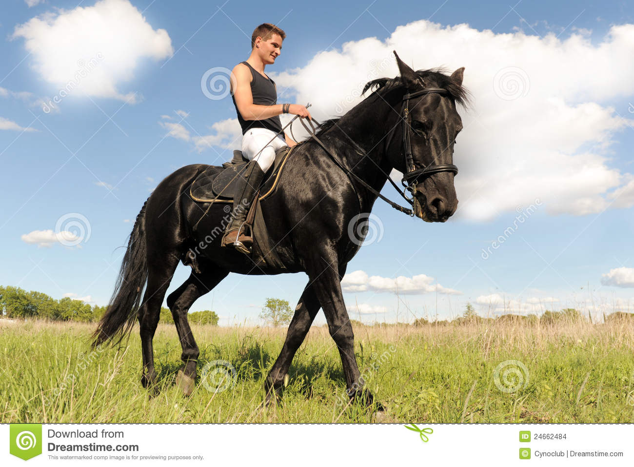 photo cheval et homme