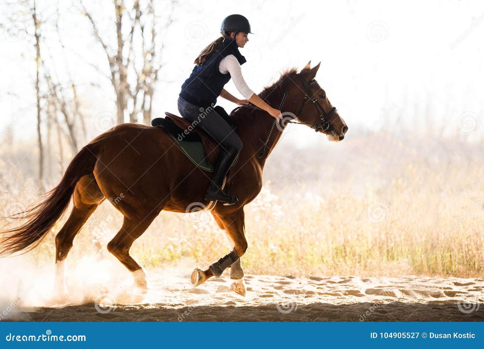 Jeune jolie fille - monte d un cheval dans le matin d hiver