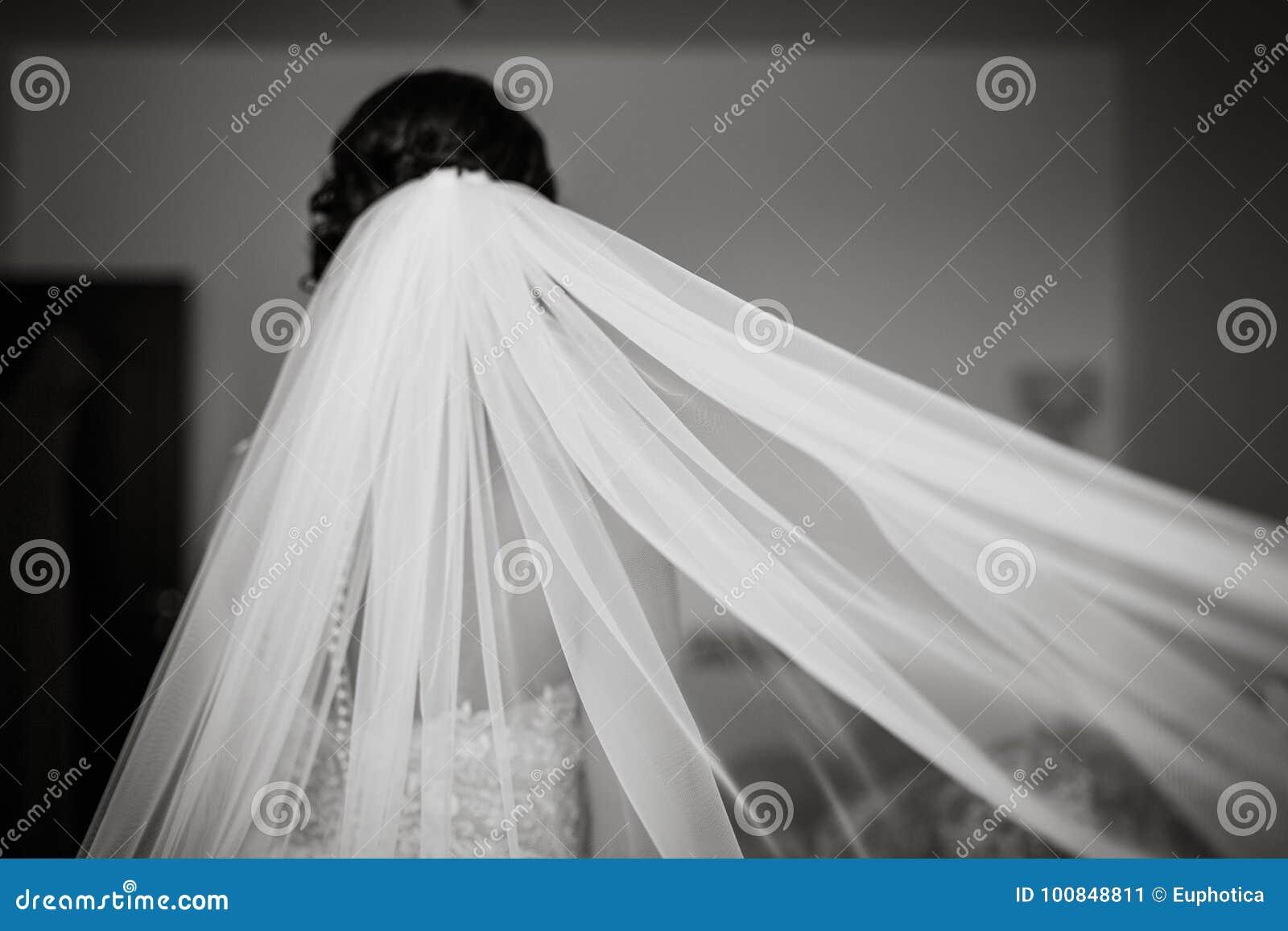 Jeune Mariée Avec Le Voile Blanc, Portrait