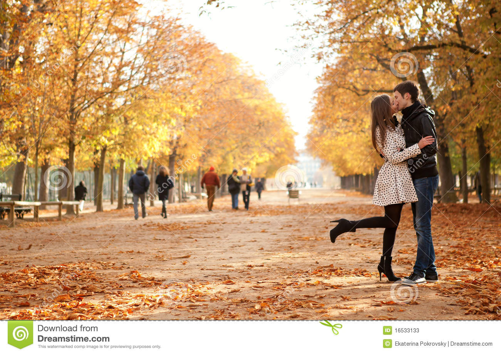 autumn engagement photo ideas - Jeunes Beaux Couples à L automne s stock Image