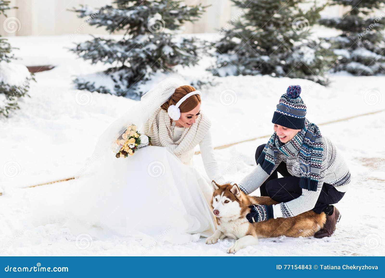 Jeunes mariés avec des chiens de traîneau de chien en hiver