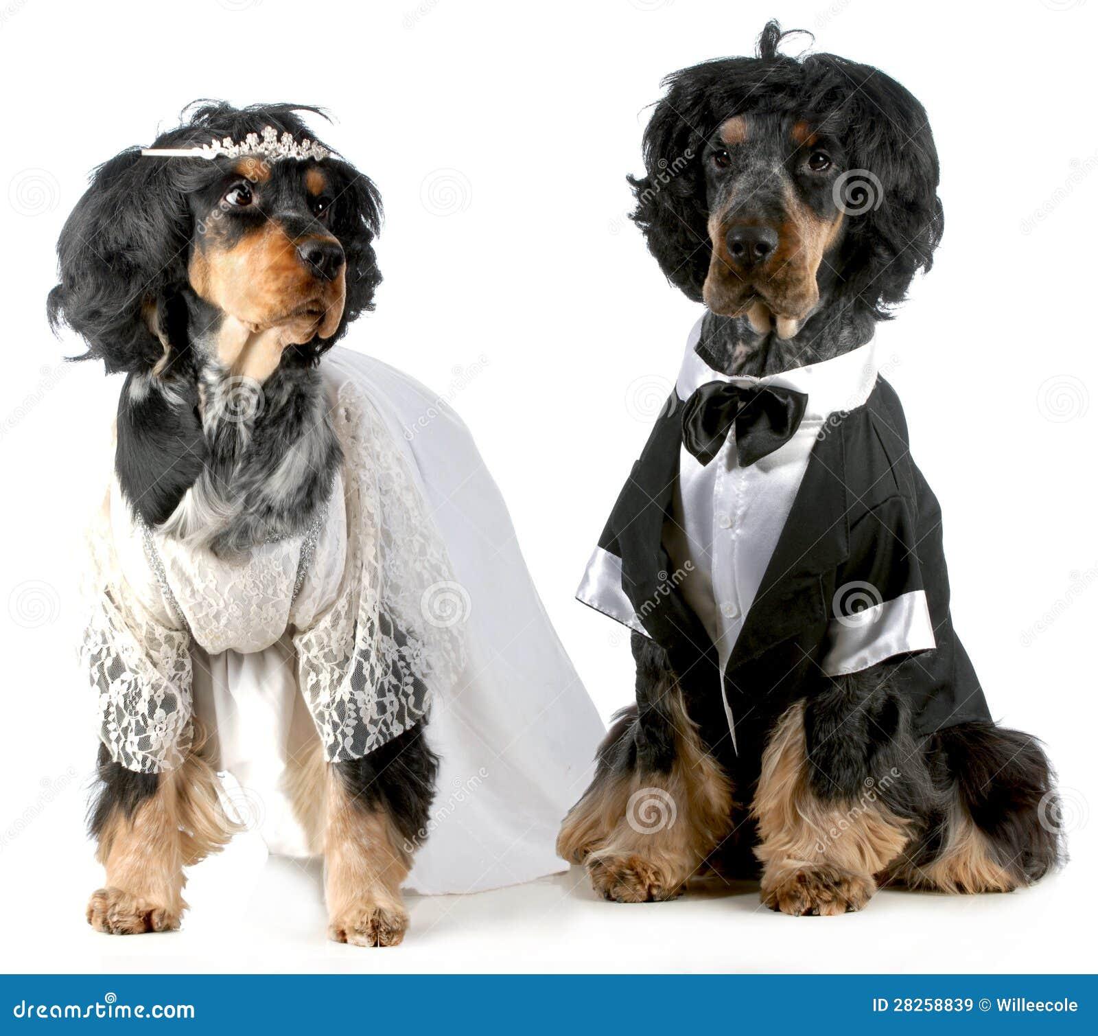 Jeunes mariés de crabot