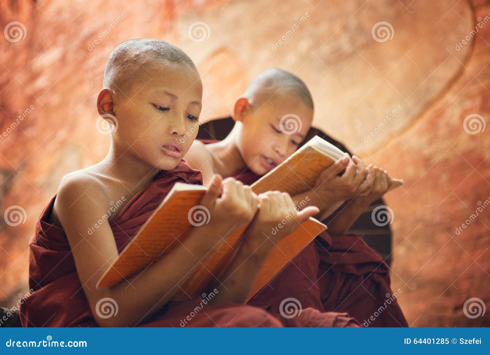 Jeunes moines bouddhistes de novice lisant en dehors du temple