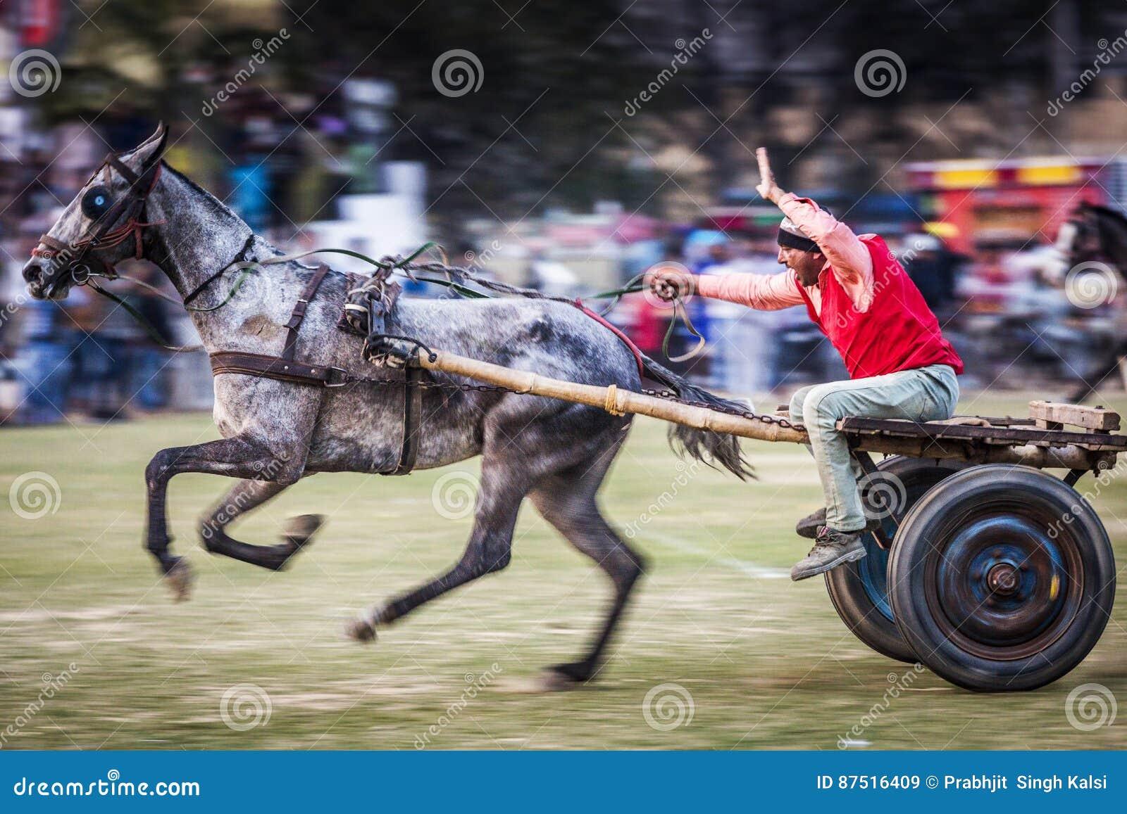 Jeux ruraux de Kila Raipur - 2017