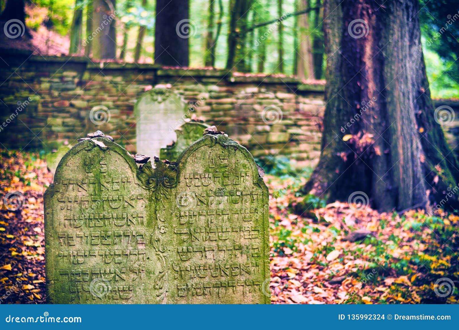 Jewish Cemetery near Dobruska
