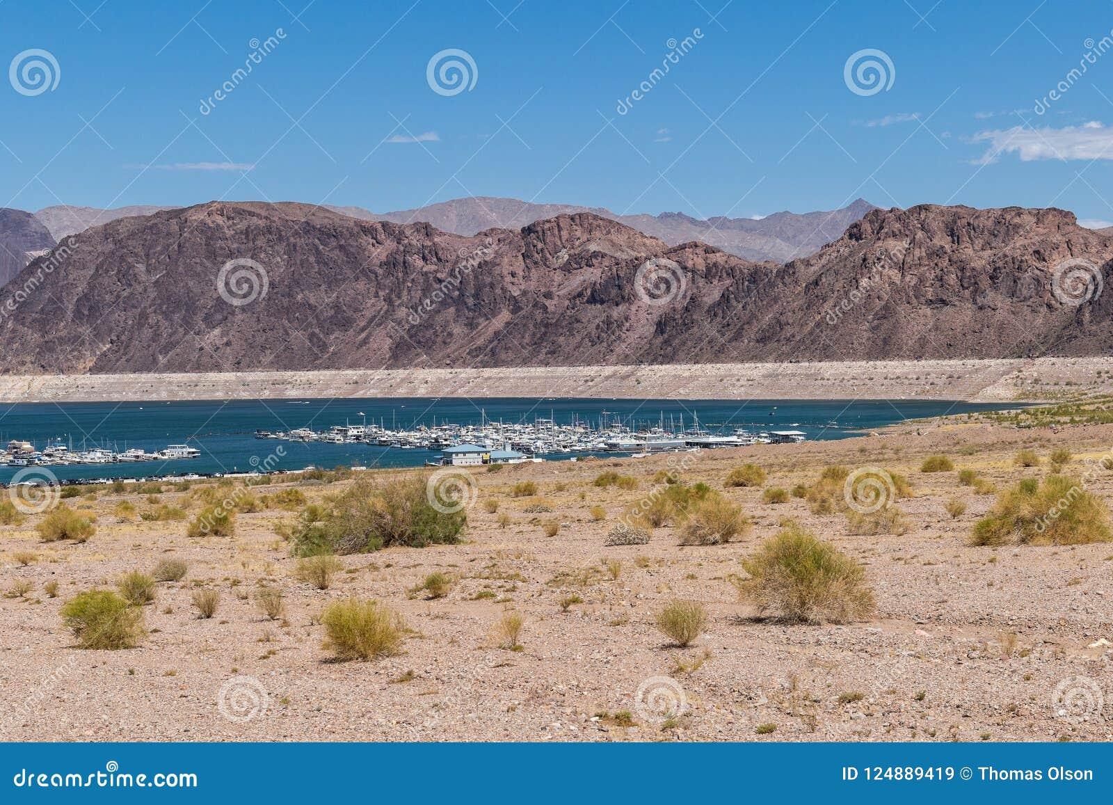Jeziorna dwójniaka Nevada linia brzegowa
