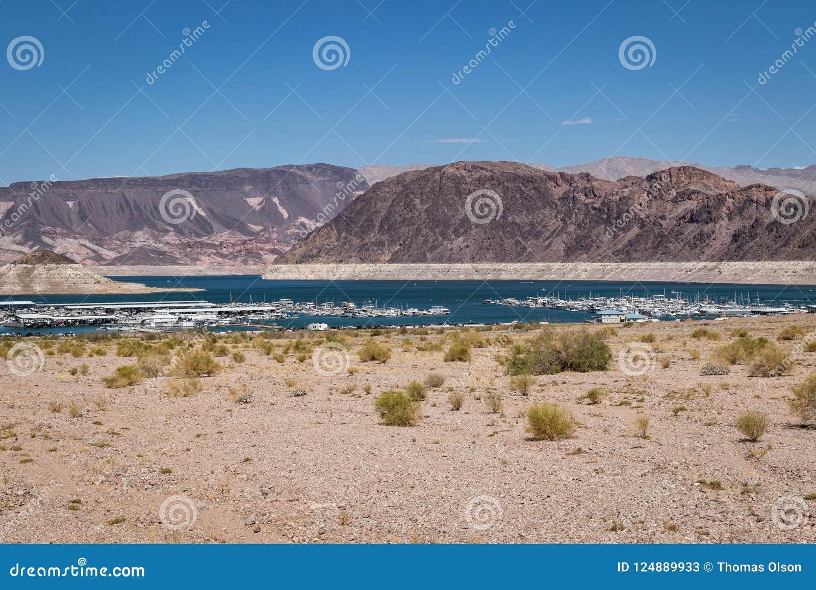 Jeziorna dwójniaka Nevada linia brzegowa z Marina