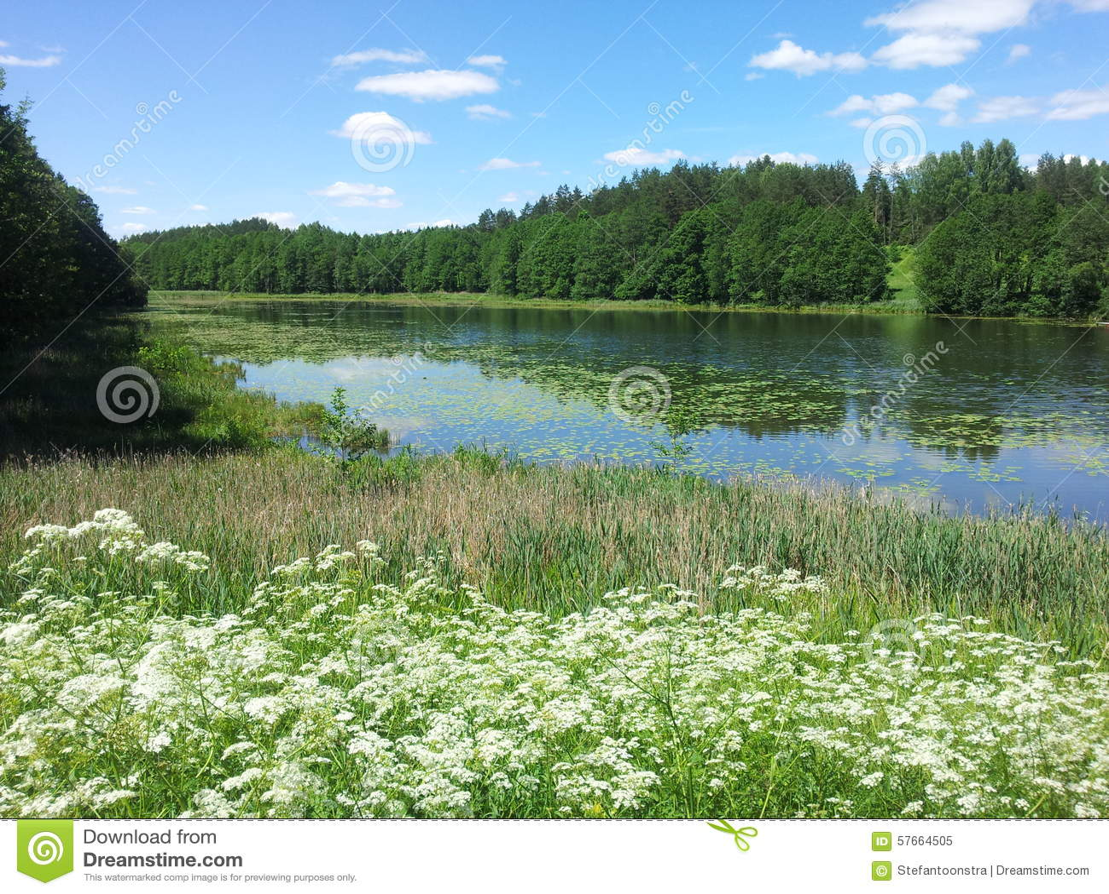 Jeziornego Å ½ alieji prÅ  deliai (Lithuania)