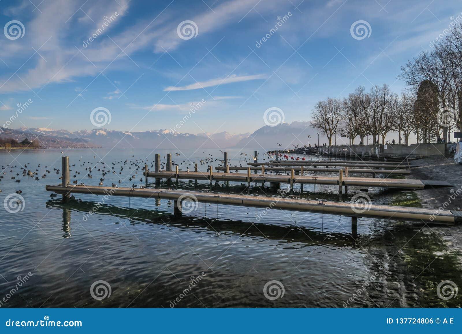 Jeziorny Le Magistrala