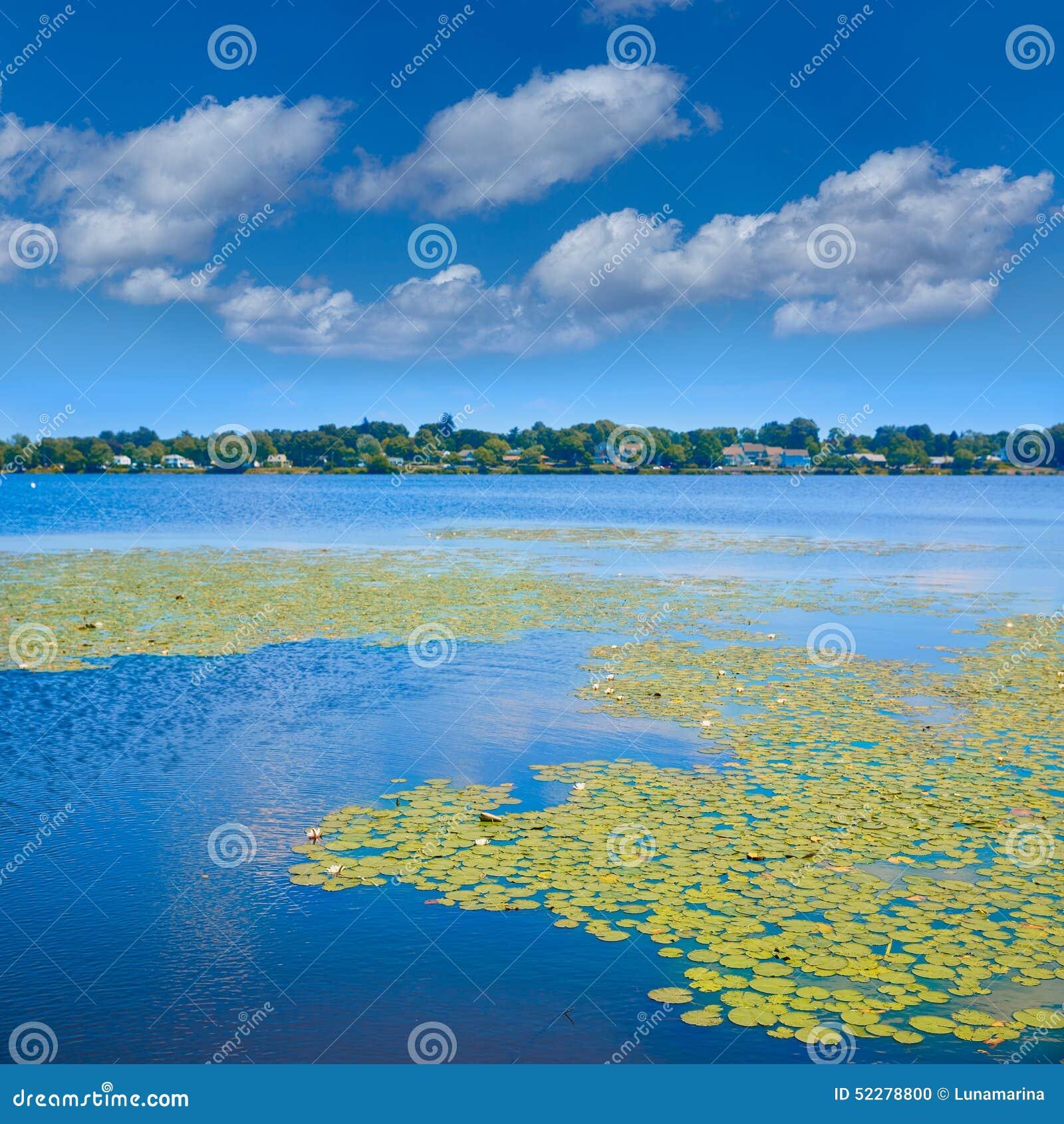 Jeziorny Quannapowitt w Wakefield blisko Boston
