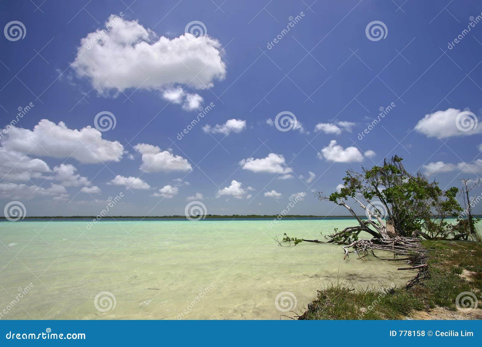 Jezioro bacalar Meksyku quintana roo