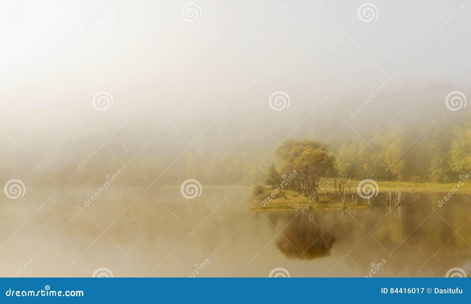 Jezioro krajobraz w mgle