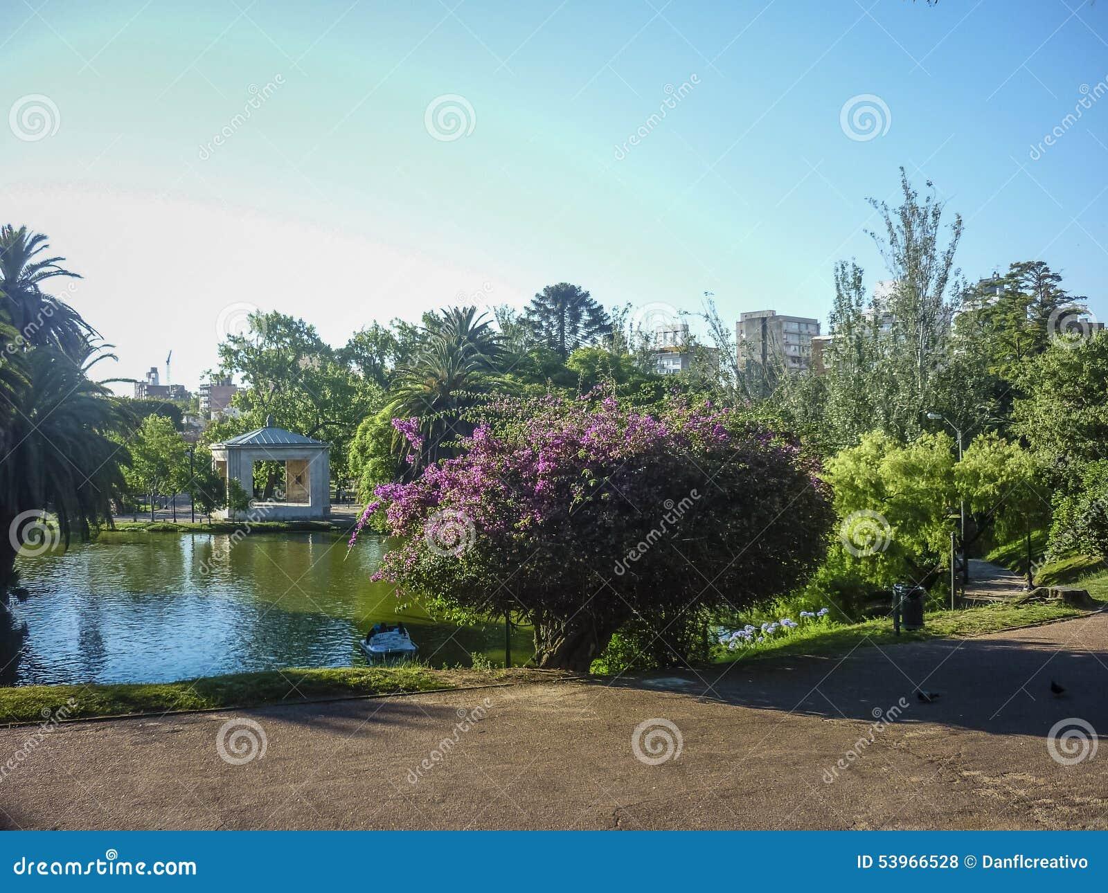 Jezioro przy parkiem w Montevideo