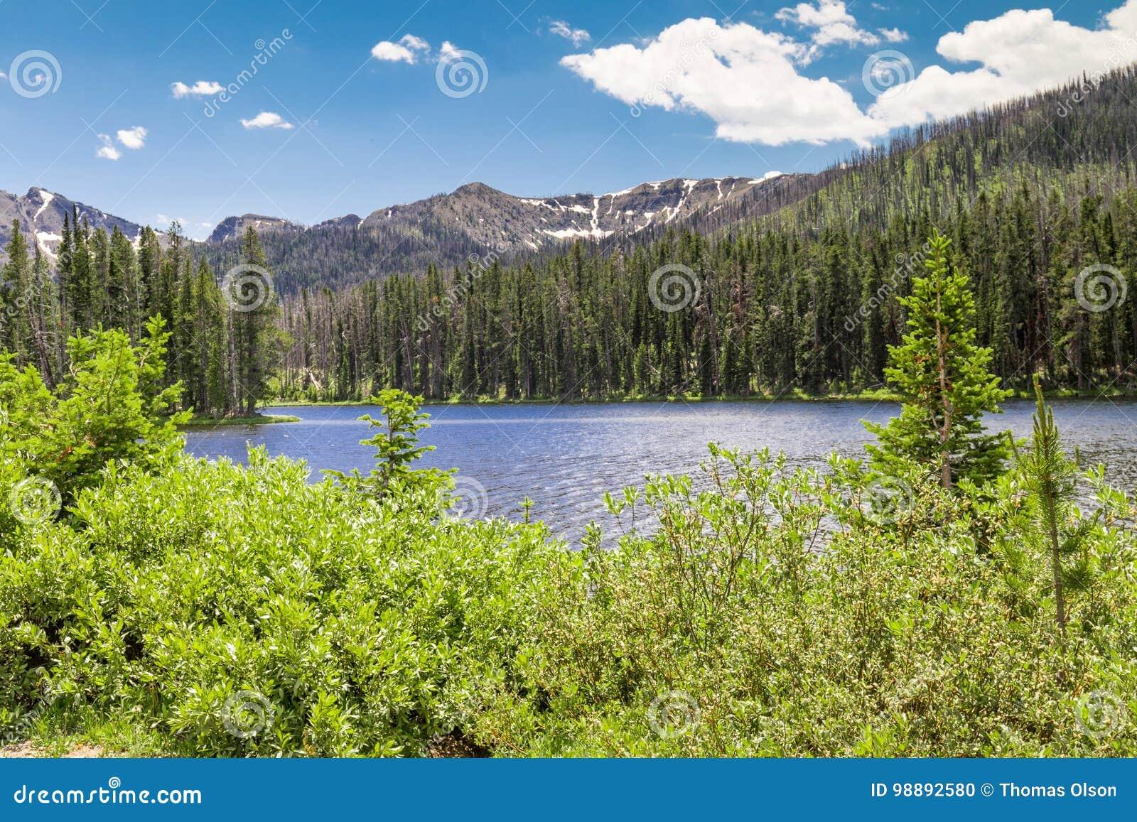 Jezioro sylvan