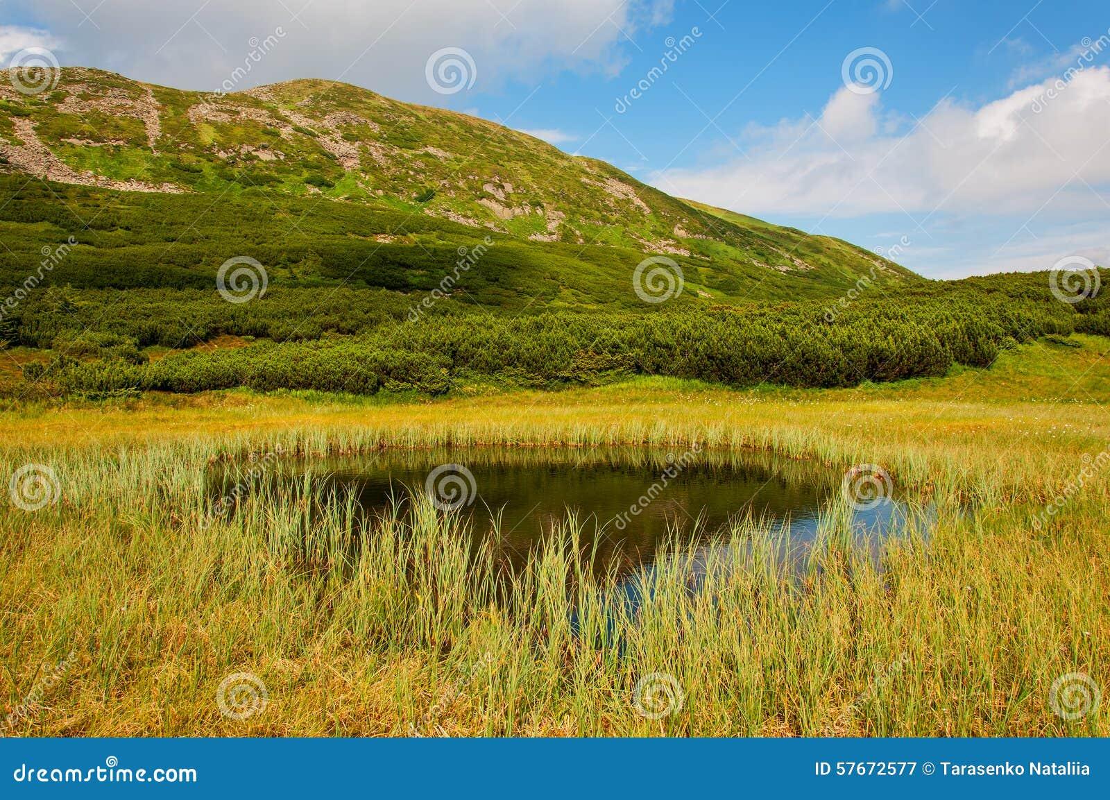 Jezioro w Karpackich górach Ukraina