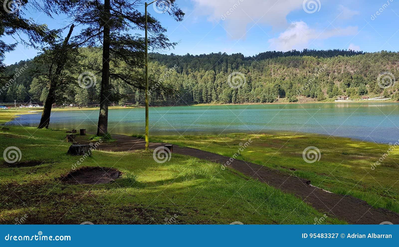 Jezioro w lesie 4