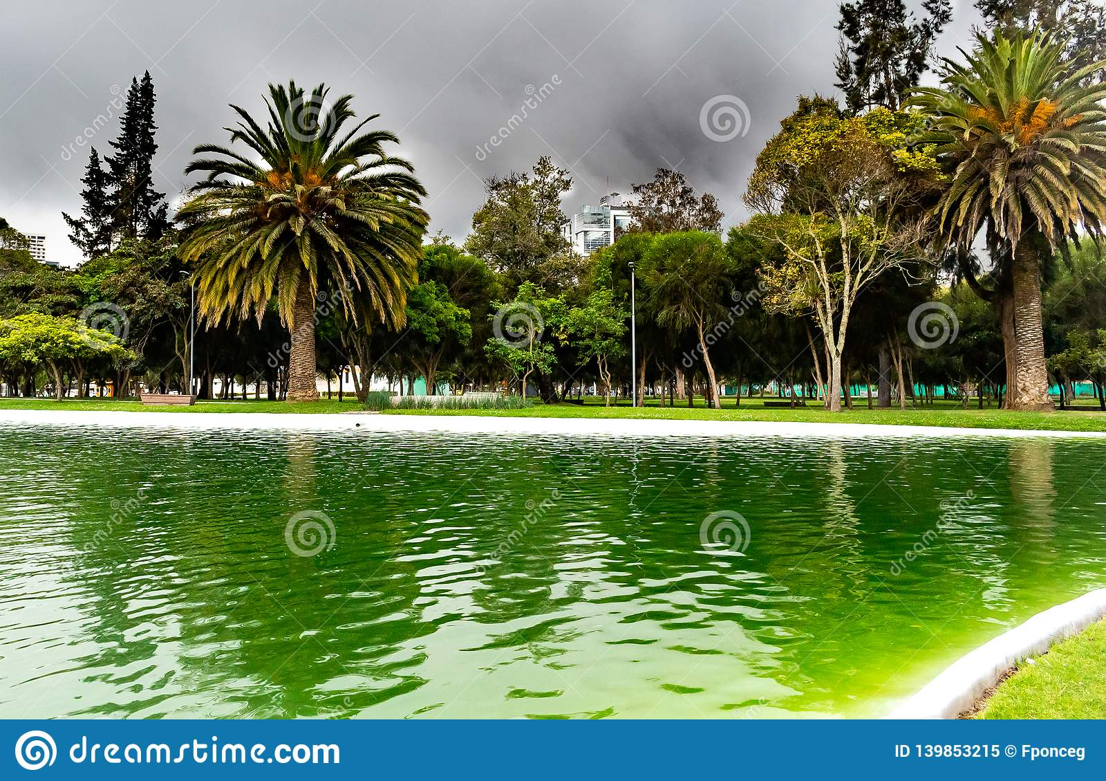 Jezioro w parku z ciemnymi chmurami