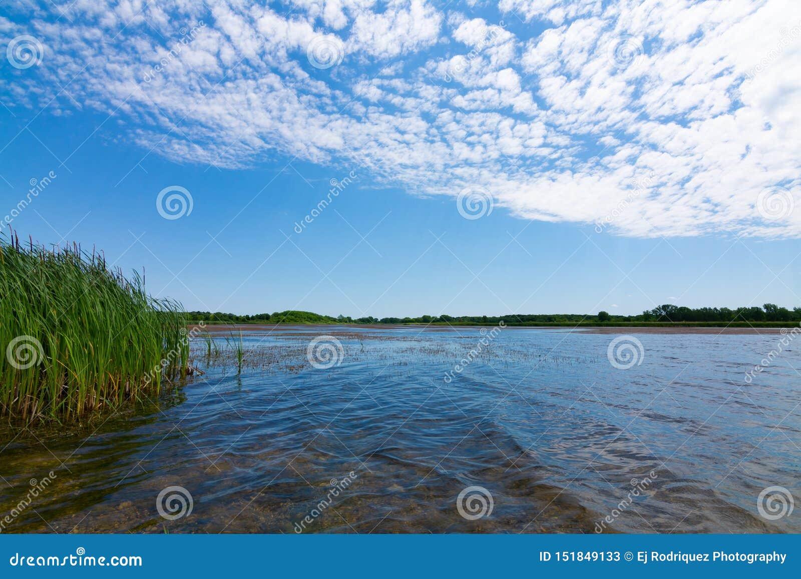 Jezioro w Richard Bong stanu Rekreacyjnego teren