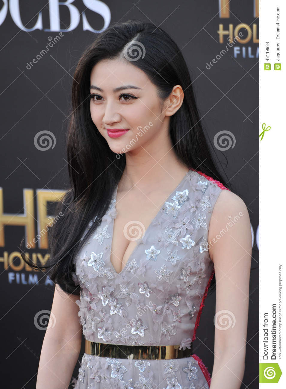 ... Tian at the 2014 Hollywood Film Awards at the Hollywood Palladium