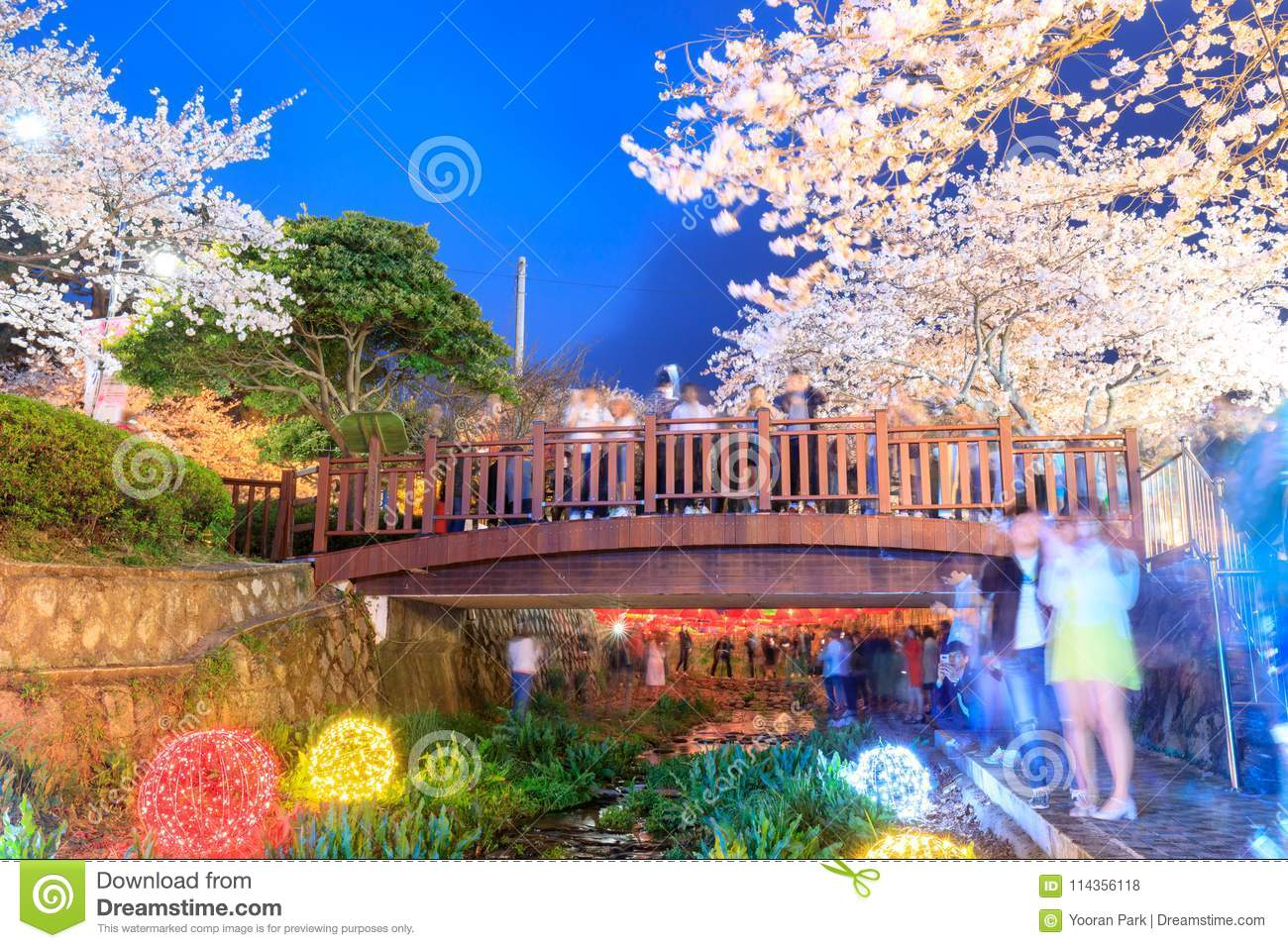Spring Cherry Blossom Festival At Yeojwacheon Stream In Jinhae Editorial Stock Photo Image Of Festival Freshness 114356118,Small Square Kitchen Design Layout Pictures