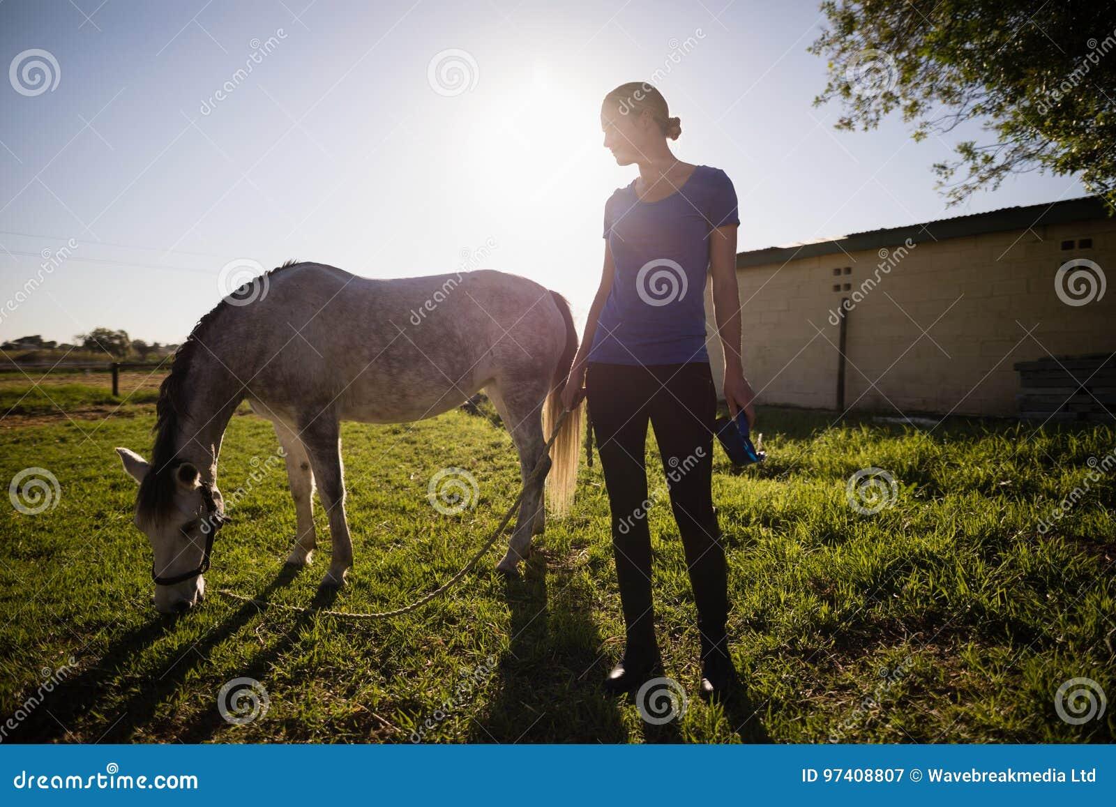 Jockey, der Pferd bei der Stellung auf Feld betrachtet