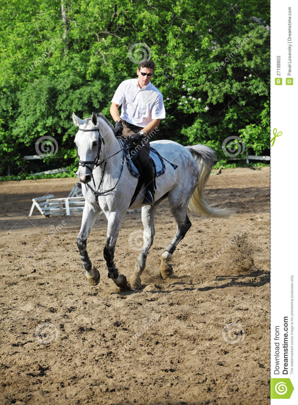 Beautiful Girl Riding A White Horse Stock Image - Image of ... |Ride The White Horse