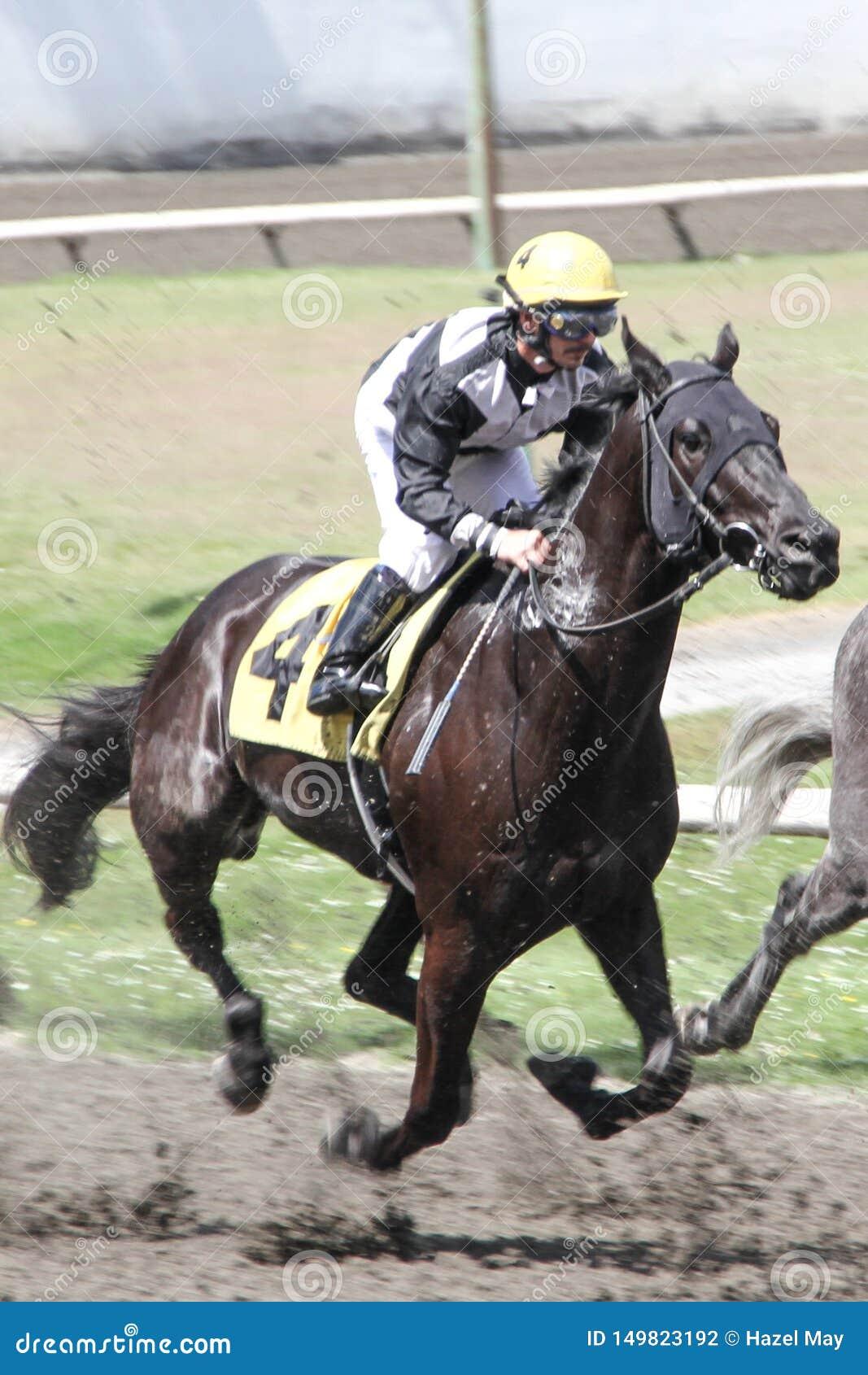 Jockey och häst i ett lopp