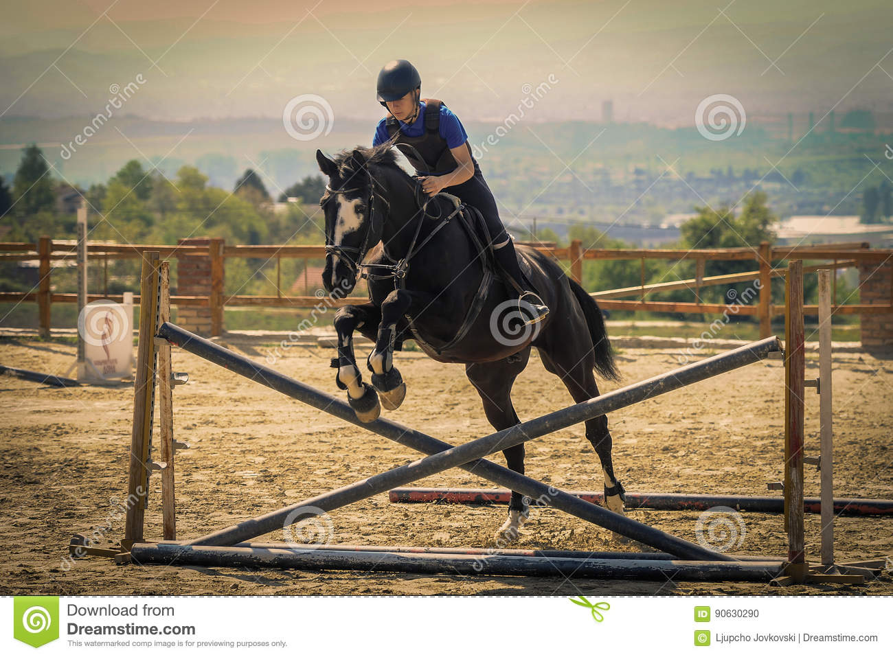 Jockey Riding A Fast Thoroughbred Horse Stock Photo Image Of Hurdle Field 90630290