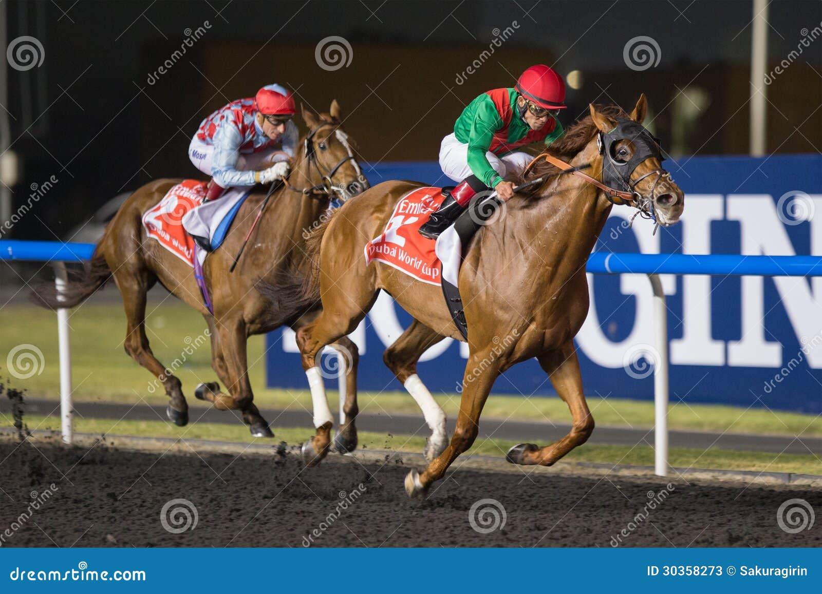 Zwierzęcy królestwo wygrywa Dubaj puchar świata 2013
