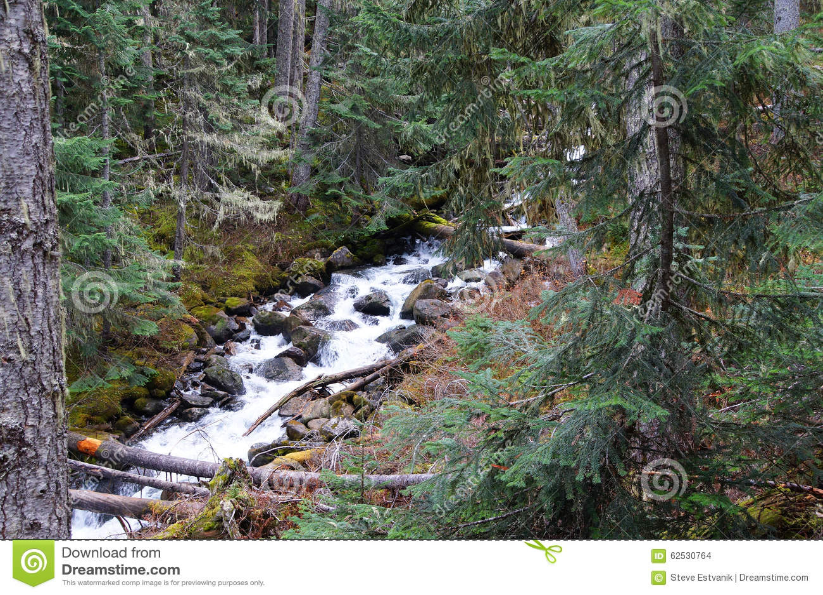 Joffre小河落下下来山沟