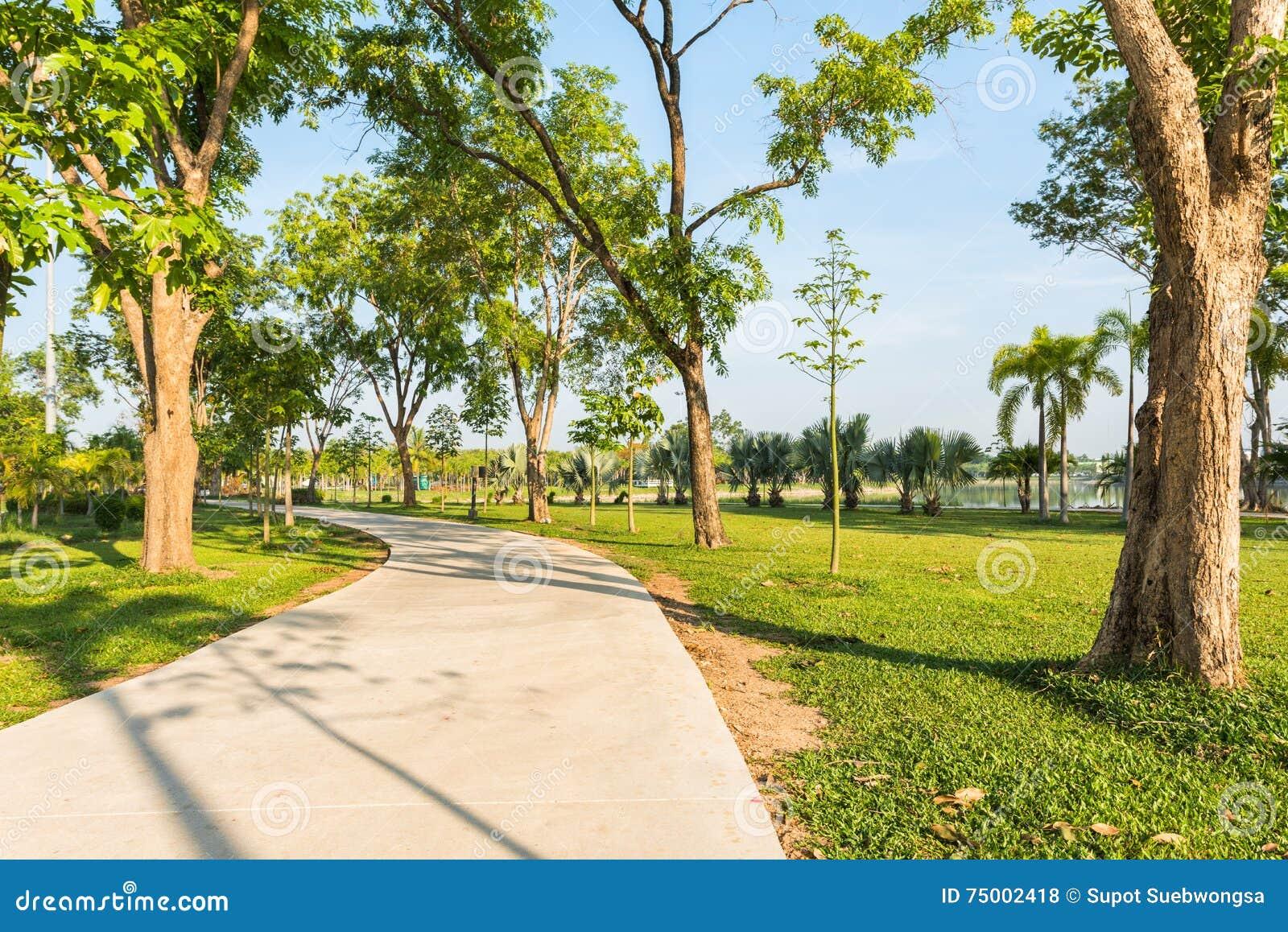 Joggingspoor bij het tuinpark en geen mensen