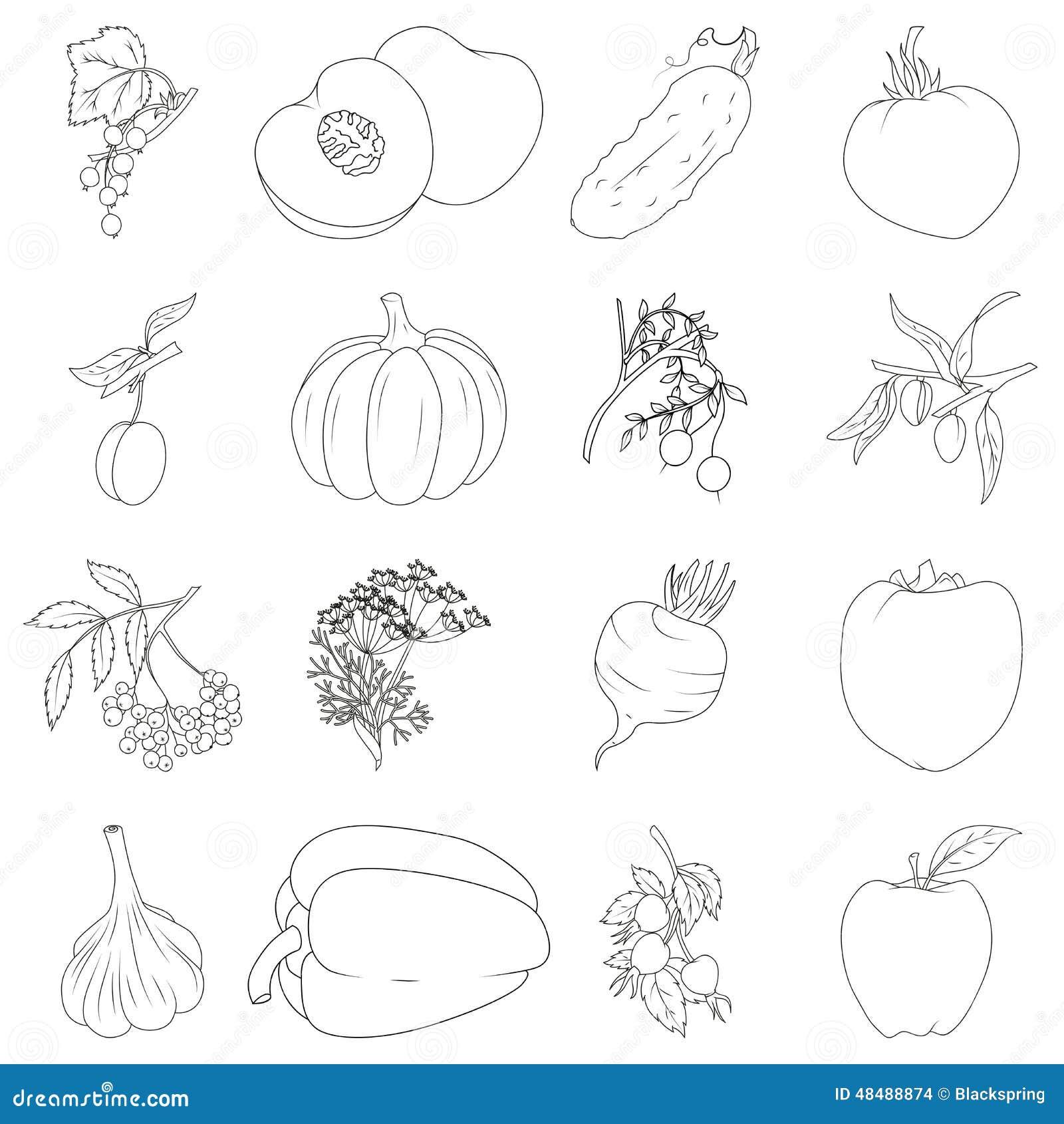 Jogo Das Frutas E Verdura Ilustracao Do Vetor Ilustracao De