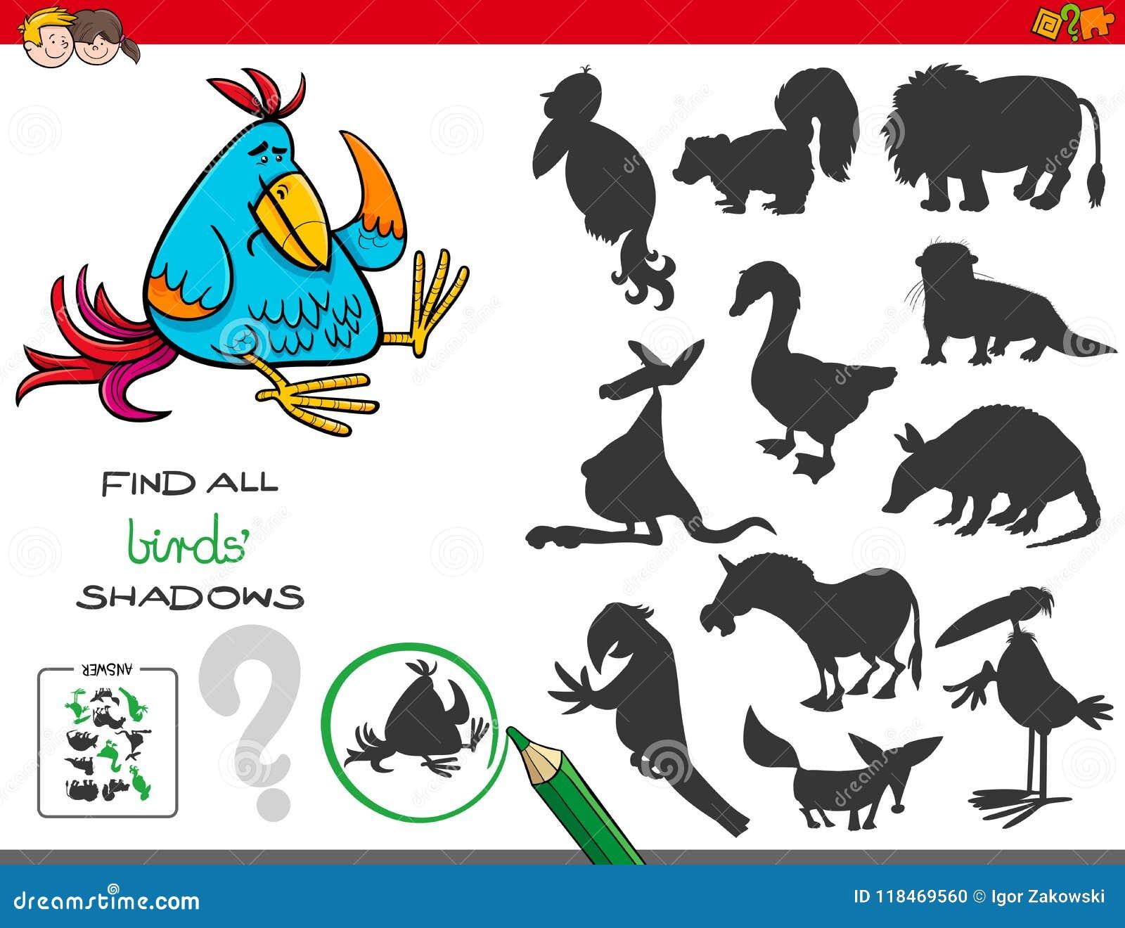 Jogo educacional das sombras com pássaros