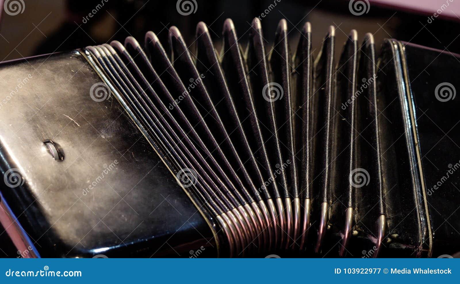 Jogo em um acordeão grande Jogando o close-up da harmônica Russo idoso do instrumento musical bayan - abotoe o acordeão